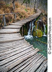 Pier over a lake in forest