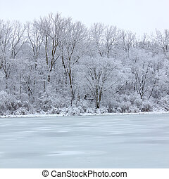 Fresh snowfall over a lake in northern Illinois on a cold winter day.