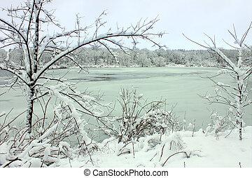 Freshly fallen snow on Pierce Lake at Rock Cut State Park - Illinois.