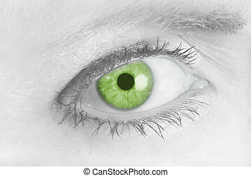 Piercing Green Eye 2