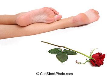 piernas, y, rosa