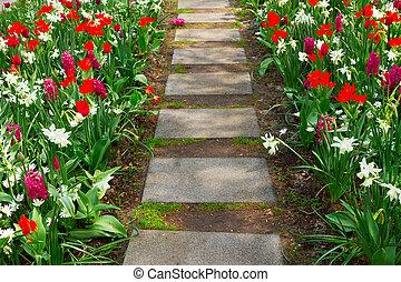 pierre, enroulement, sentier jardin