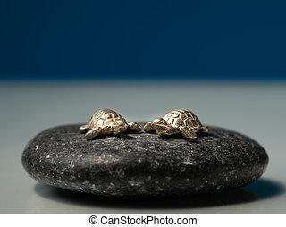 pierre, fait, or, tortues, séance, deux, mer noire, petit