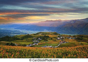 pierre, fleur, hualien, fuli, orange, soixante, daylily, taiwan, montagne