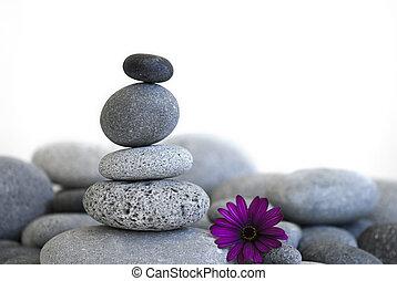 pierre, fleur, tour