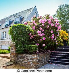 pierre, naturel, jardin, landscaping, étapes, maison