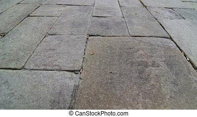 pierre, naturel, jardin, surface, pavage, fond, dalle, patio...