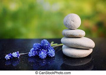 pierres, bleu, composition, poli, jardin, été, miskuri, zen, granit, table, fleurs, masage