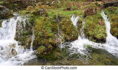 pierres, couvert, ruisseau, rochers, eau, par, forêt, mousse, écoulement, vert, long