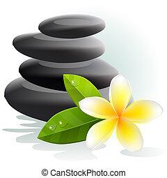 pierres, fleur, plumeria, fond, spa, blanc
