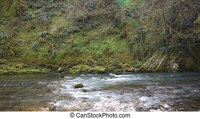 pierres, montagne, arbres, 11, gorge, rivière