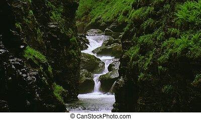pierres, montagnes, ruisseau, été, nature., fluxs, eau, entre, couvert, day., greenery., paysage.