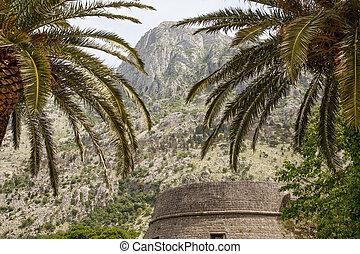 pierres, passé, vieux, palmiers