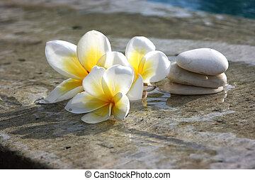 pierres, spa, fleurs, hôtel