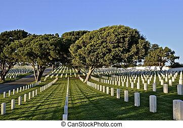 pierres tombales, dans, a, cimetière national
