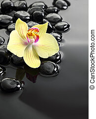 Photo de stock de pierres gris orchid e zen ciel pierres nuages gris csp15763822 - Pierre eau pokemon noir ...