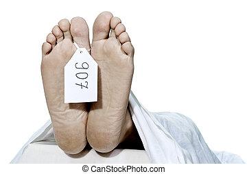 pies, humano
