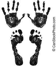 pies, impresión, manos