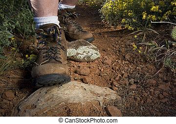 pies, montaña, excursionista, rastro