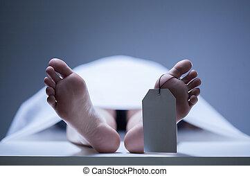 pies, morgue, primer plano, humano