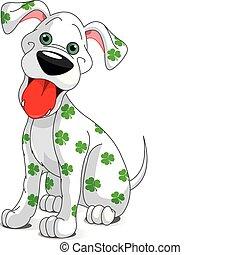 pies, st., uśmiechanie się, dzień, patrick's, sprytny