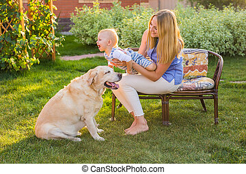pieszczoch, odprężając, ogród, rodzinny pies