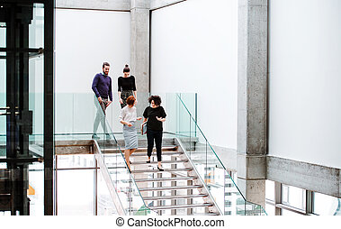 pieszy, grupa, schody, businesspeople, młody, na dół, mówiąc.
