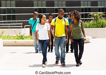 pieszy, grupa, studenci, amerykanka, kolegium, afrykanin, campus