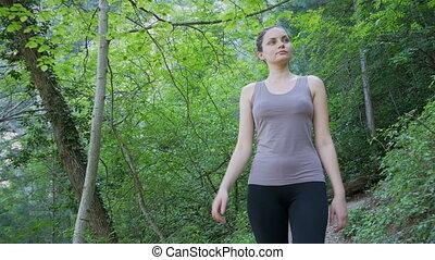 pieszy, kobieta hiking, trzęsie się, ciągnąć, las, podróżnik, ścieżka, mountain.