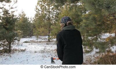 pieszy, kobieta, sunglasses, obcy, forest., drzewo., hipster, lekkie uderzenia, człowiek, siekiera, ucho, kapelusz, rzuty, broda