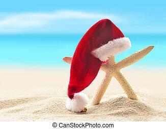 pieszy, plaża., morze, sea-star, santa kapelusz, piaszczysty