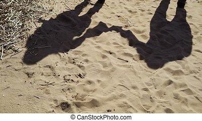 pieszy, plaża, para, młody