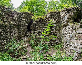 pietra, antico, denso, foresta verde, rovine, fortezza