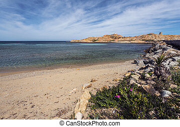Pietra Islet seen from the west beach of Ile-Rousse in ...
