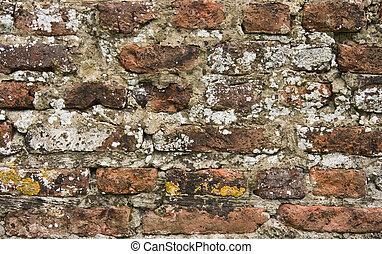 pietra, vecchio, 300, anni, parete, parte, chiudere, mattone, vista