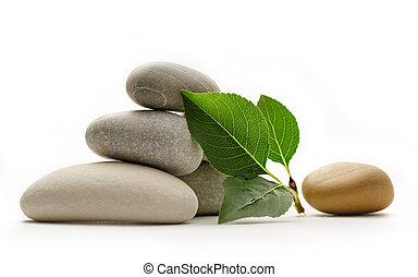 pietre, con, foglie