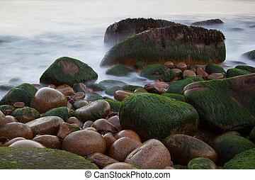 pietre, su, lontra, scogliere, costa, con, sfocato, acqua,...