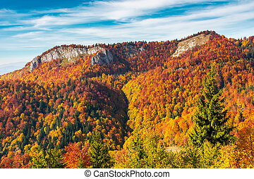 Pietrele Negre rock formation in Arieseni. gorgeous location...