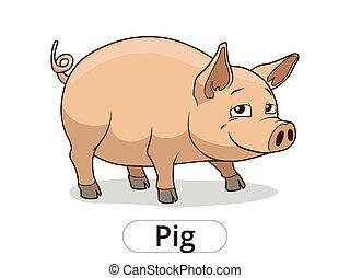 Pig animal cartoon illustration for children