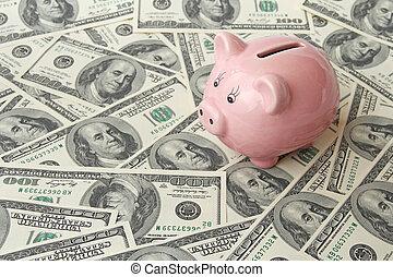 pig bank on one hundred dollar bills