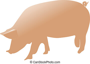 pig color vector illustration isolated on white