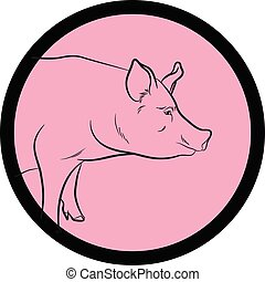 Pig Face Closeup Vector