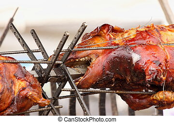 pig on a spit. Spit roasting is a traditional international method of cooking a whole pig.