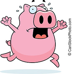 Pig Panic - A cartoon pig running in a panic.