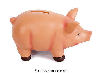 pig piggy bank isolated on white background