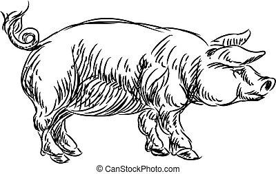 Pig Pork Food Grunge Style Hand Drawn Icon - A pig pork food...