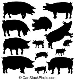 Pig silhouettes - Set of editable vector silhouettes of pigs...