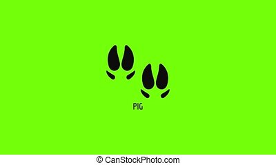 Pig step icon animation best simple object on green screen background