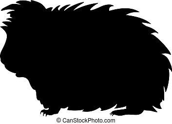 pig., tier, inländisch, guinea, silhouette, nagetier