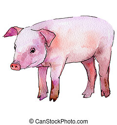 Pig wild animal in a watercolor style isolated.